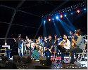flamenco-diasporo